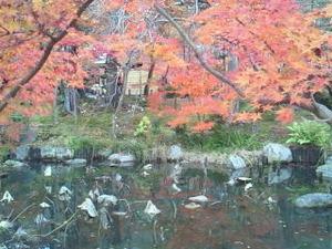 【愛媛・松山】 11/22 チェンジ・ザ・ドリーム  シンポジウム